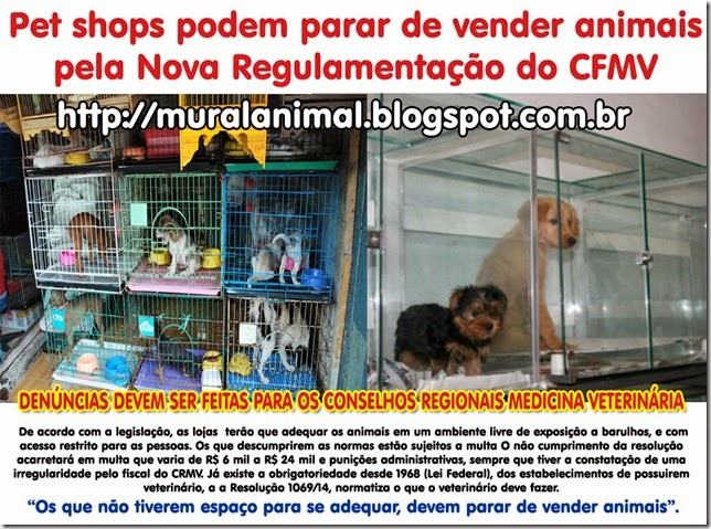 petshops_venda_animais