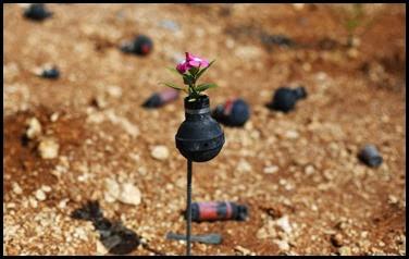Dai lacrimogeni nascono fiori.. (9)