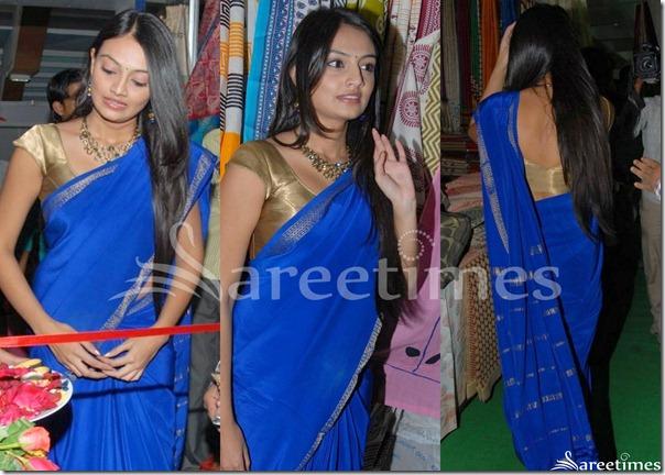 Nikitha_Narayan_Blue_Saree