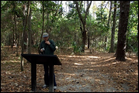 Edisto Trails 040