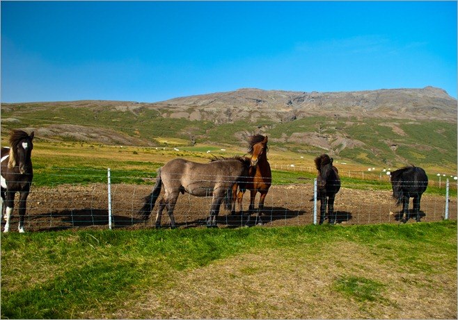 Iceland-0286