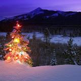 Navidad%2520Fondos%2520Wallpaper%2520%2520408.jpg