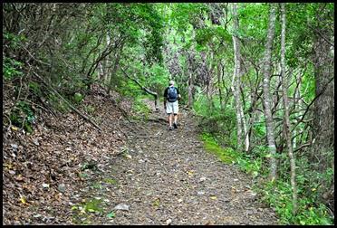 20e - Vogel SP - Bear Hair Trail - along the stream