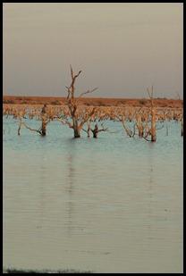 lake 031-1