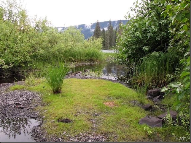 creek leading to lake