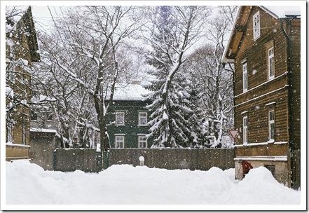 talv 2011 2