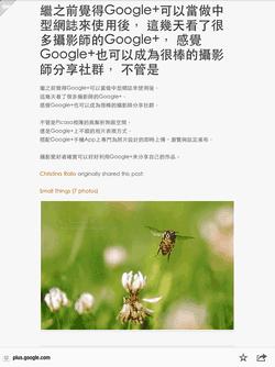 google  user feed-08