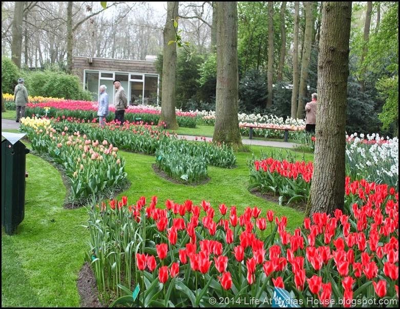 Keukenhof Gardens 26