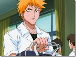 Bleach 18 Ichigo Broods