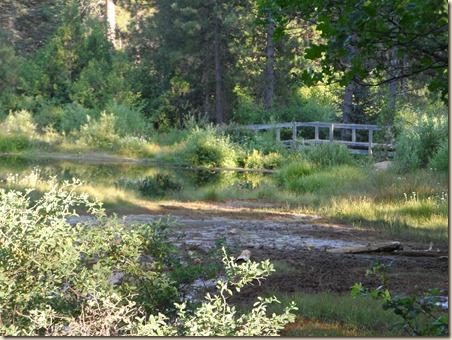 Lake Shasta 275