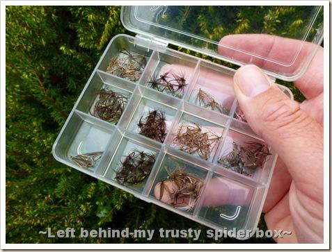 Spider Box 002