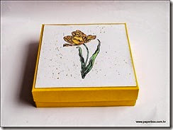 Kutija za razne namjene - Geschenkverpackung a (9)
