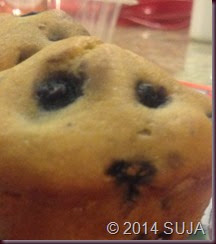 blueberry muffins_2