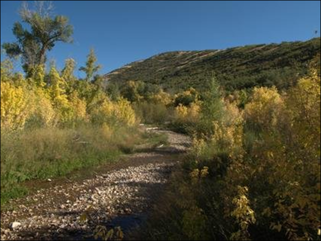 Dell Creek in Parley's Canyon, is a source of water for Salt Lake City. A new study shows how climate change is likely to affect the various creeks and streams that help slake Salt Lake City's thirst. Photo: Patrick Nelson / Salt Lake City Department of Public Utilities