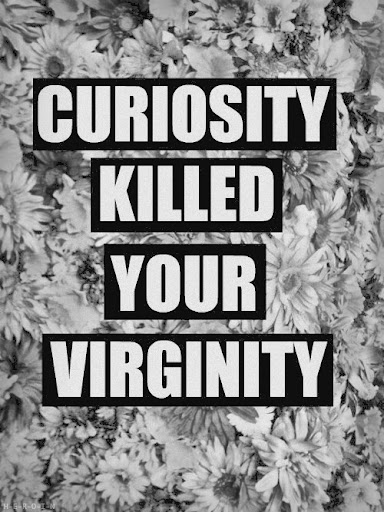 curiosity_killed_your_virginity_quote