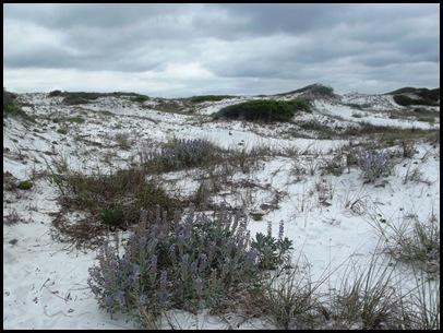 Dune hike & rain paddle 020