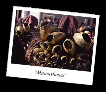 Immagine che mostra i Mamuthones