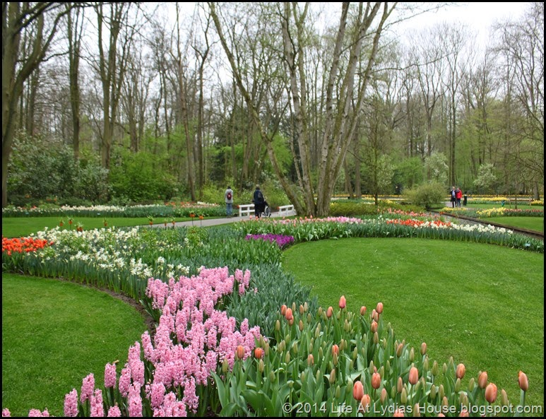 Keukenhof Gardens 12