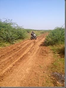 Freebiker Highway