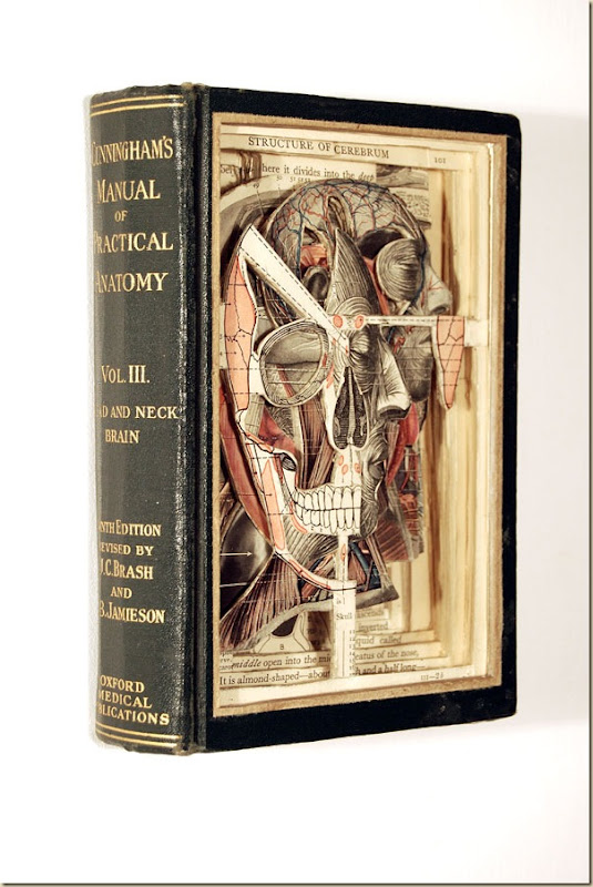 Brian Dettmer sculpteur de livres (8)