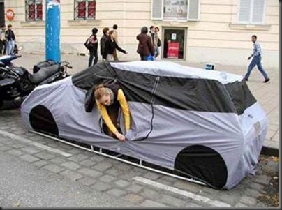 cort masina