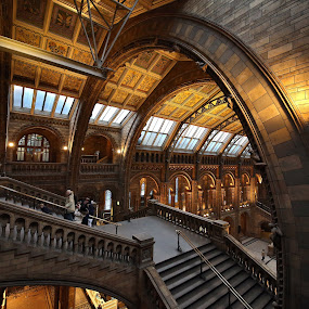 big arch at NHM by Almas Bavcic - Buildings & Architecture Public & Historical