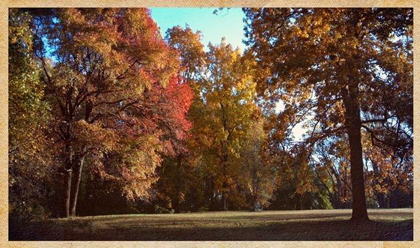 2012-10-22_17-13-38_621 copy 2