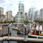 tour boat harbor south of Yaletown, Vancouver in Vancouver, British Columbia, Canada