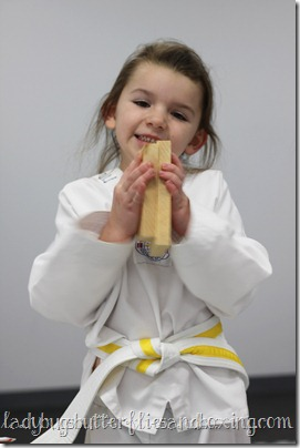 yellow belt 3