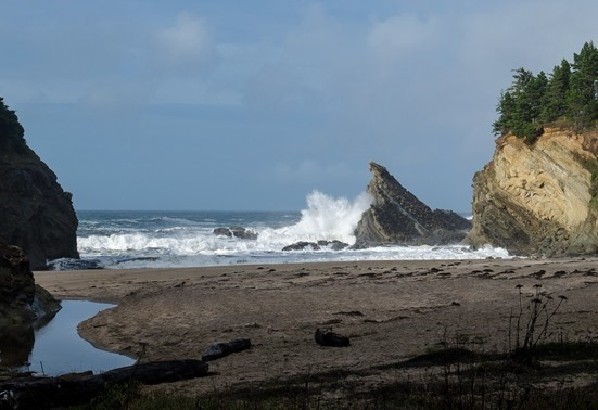 hiking Cape Arago (32 of 37)