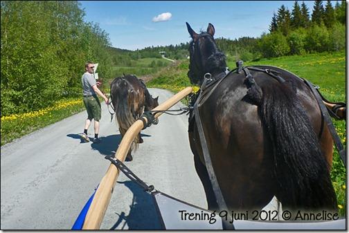 20129juni-trening_01