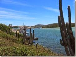 Praia do Forte02