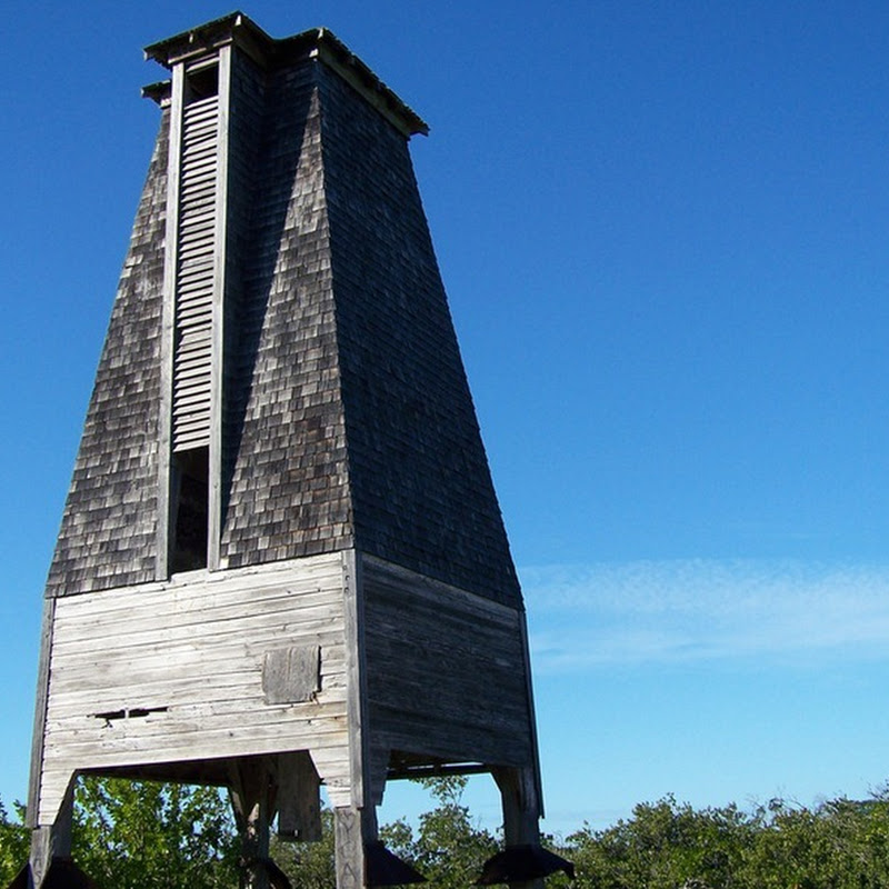 The Sugarloaf Key Bat Tower: Mosquito Control Scheme That Didn't Work
