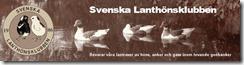 svenska_lanthonsklubben_topp