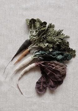 jungjung-carotte (2)