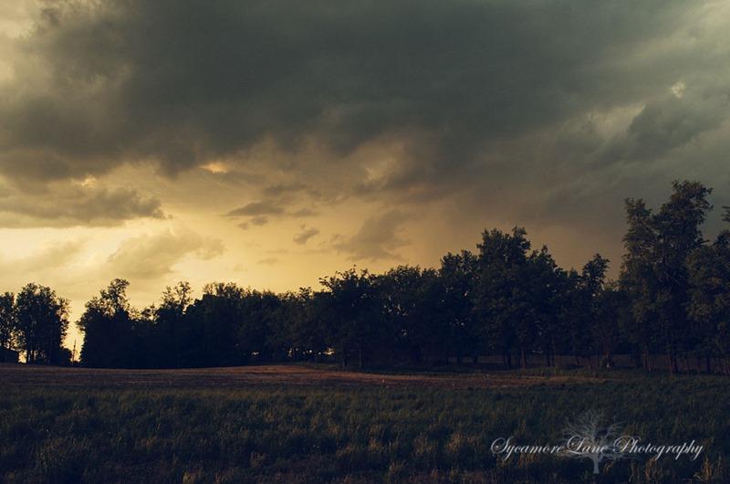 SycamoreLane Photography- storm