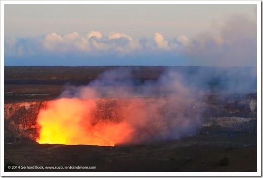 140724_HawaiiVolcanoesNP_0268