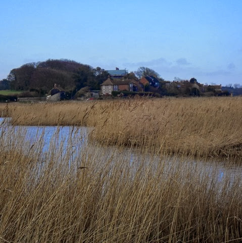 looking across the reed beds to Cley village