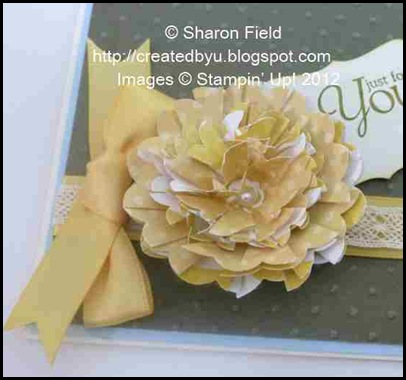 P11103282_Sharon_Field_Createdbyu_Blogspot