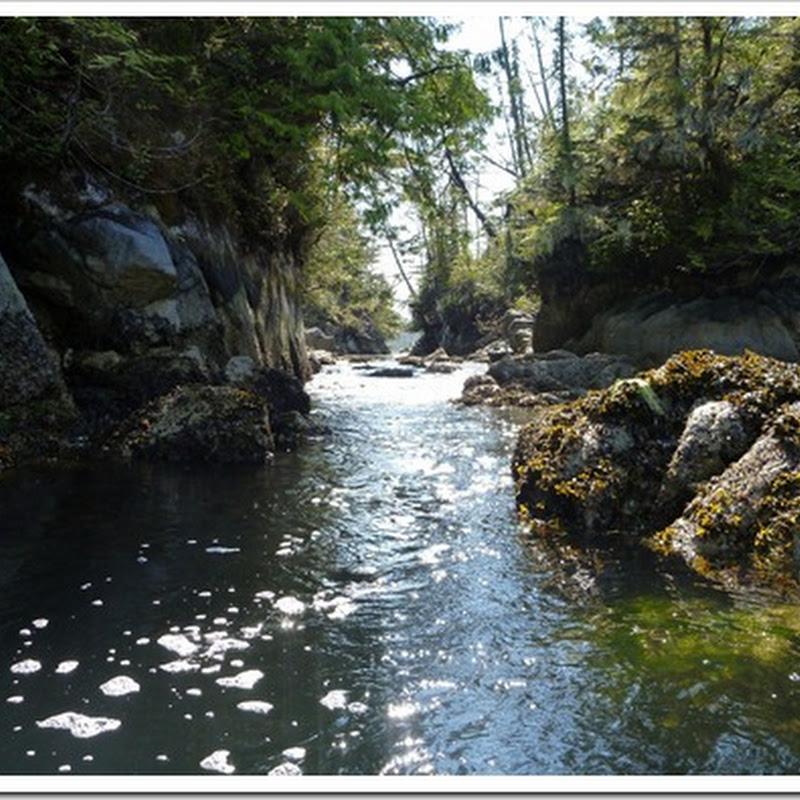 Logbook: Miles Inlet
