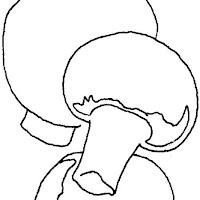 agaricos-dibujos-para-colorear.jpg