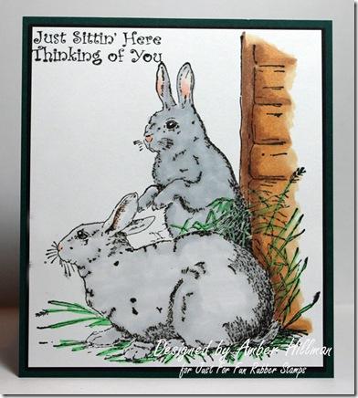 bunniesajhcopy