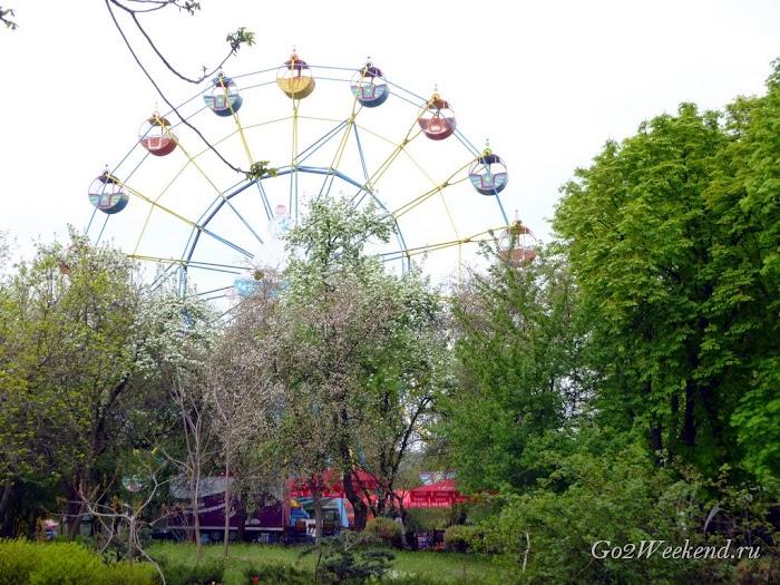 Kiev_Zoo_37.jpg
