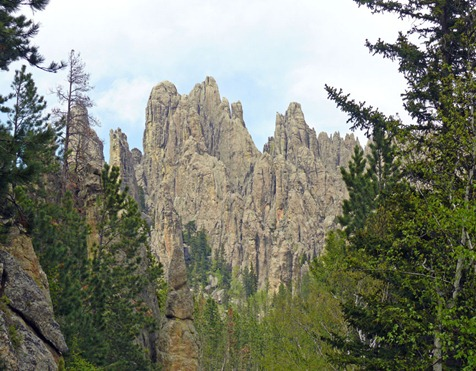 Needles Highway6