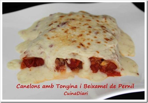 1-4-Canelons tonyina-ppal2