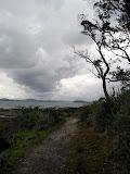 North Island - Auckland