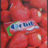 Orbit braske 03.jpg