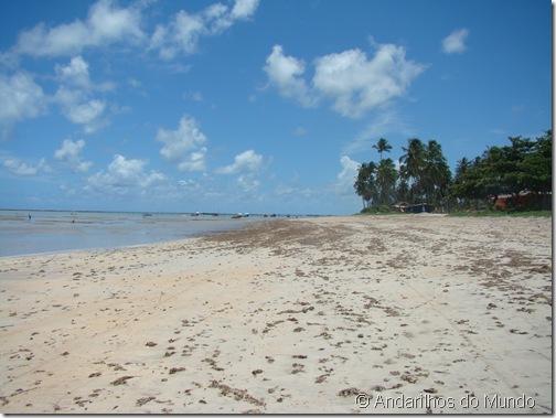 Praia de São Miguel dos Milagres Alagoas Canto esquerdo