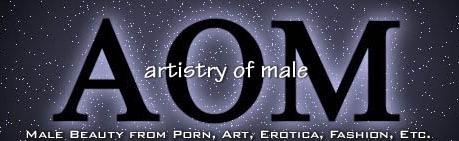 AOM Banner
