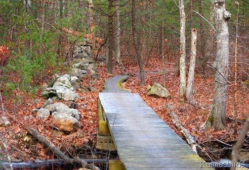 14. trail back-kab